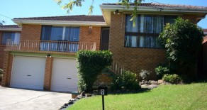 9 Barlow Place, Georges Hall NSW 2198